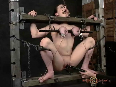 Infernal Restraints Video Collection 6