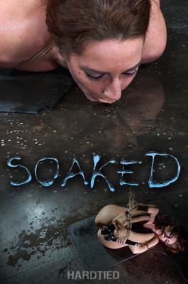Soaked, Savannah Fox, Jack Hammer