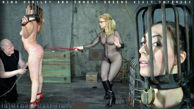 Infernalrestraints — Feb 14, 2012 - Nina Hartley and Ernest Greene — Visit Intersec