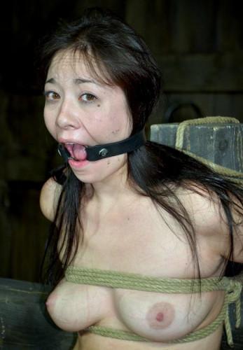 The Japanese cute endures pain