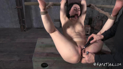 BDSM HardTied Wanting Katharine Cane