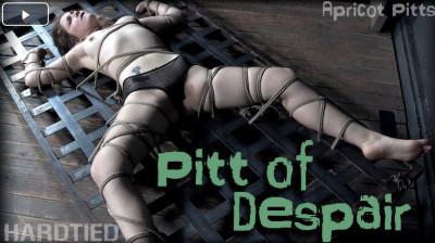 Description Pitt of despair