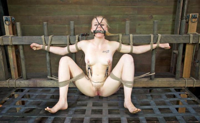 Very special bdsm sex