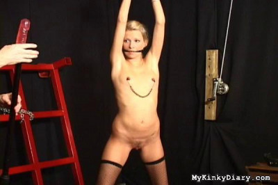 My Kinky Diary Video Collection 1
