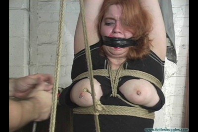 Alectronas Arms Tied Overhead Crotchroped Spread Clamped vol. 2