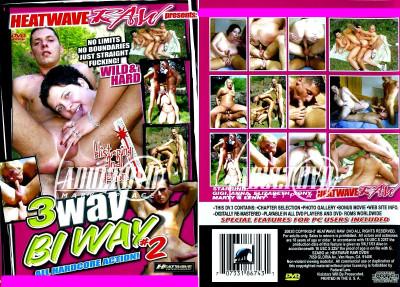 3 Way Bi Way 2