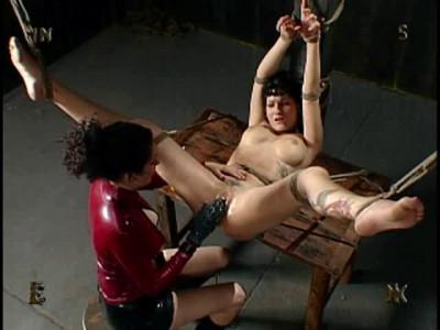 Insex – Princess Donna II (731, 120, Donna)