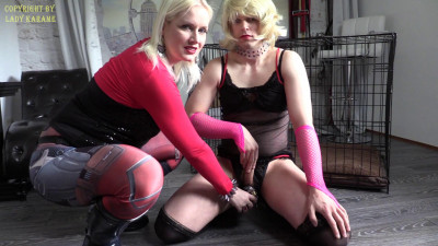 Lady Karame - Sissy, Today I Fuck You In A Cage!