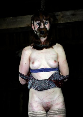 Infernal Restraints - Tortured Body (Hazel Hypnotic)