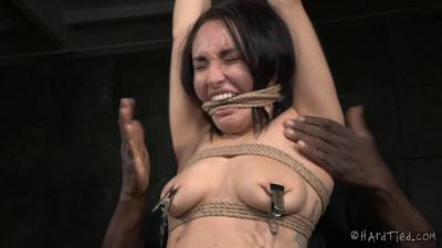 Gabriella Paltrova, Jack Hammer high