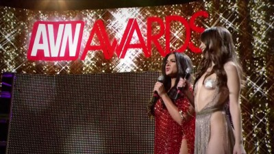 Description AVN Awards Show 2017