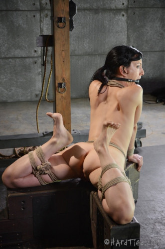 HT – Elise Graves – Bondage Therapy – October 22, 2014 – HD