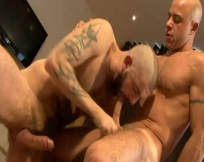 Hard dicks & hairy holes