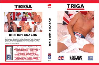 Triga - British Boxers