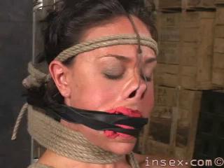 Insex - Ash 6