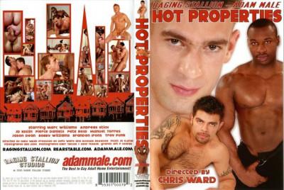Description Hot Properties