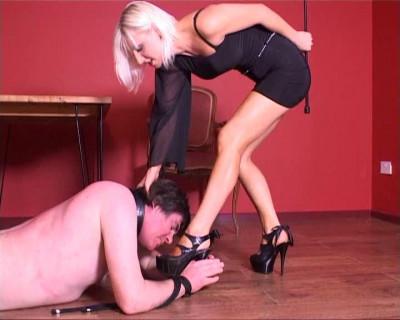 Description Mistress Vixen - Begging Ms Vixen