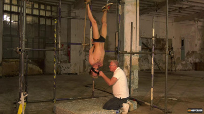 Hung Upside From the top to the bottom of - Used In the manner that A Punching Sack - Chris Jansen & Sebastian Kane