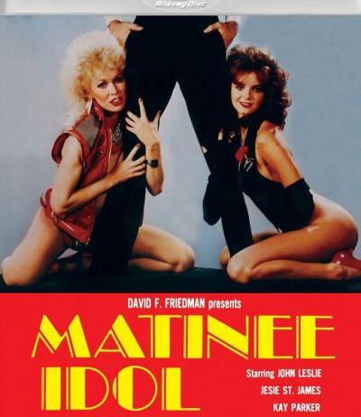 Description Matinee Idol (1984)