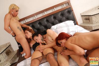 Pantyhose orgy