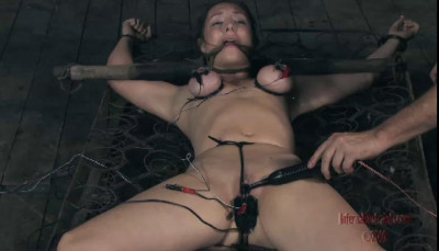 Bondage Pig Part One - Sister Dee