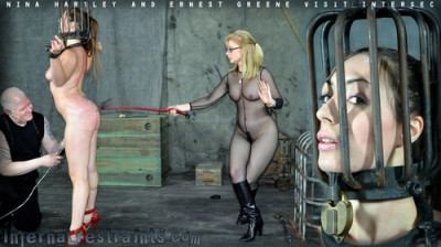 Description Dee & Nina Hartley & Ernest Greene