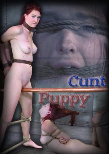 Cunt Puppy 2