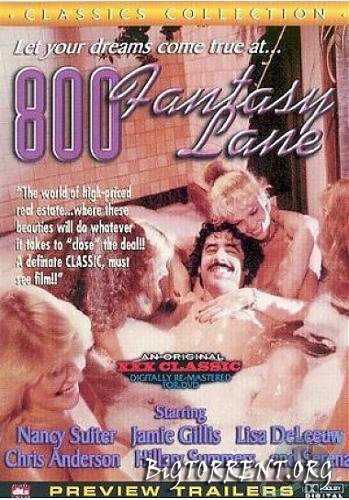 Description 800 Fantasy Lane