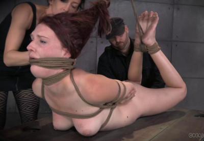 Rough Bondage For Amazing Ashley Lane