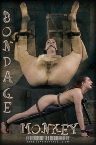Description Endza Bondage Monkey Part 3