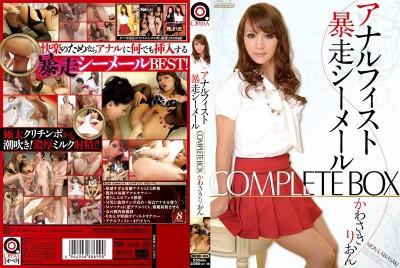 Anal Fist Runaway Shemale Complete Box Kawasaki Rion (2014)