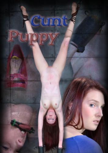 Cunt Puppy 1