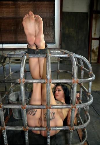BDSM Live Fast