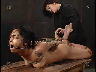 Insex - Tests 14 (Tests XIV)