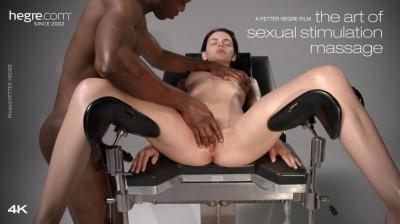 Description The Art Of Sexual Stimulation Massage