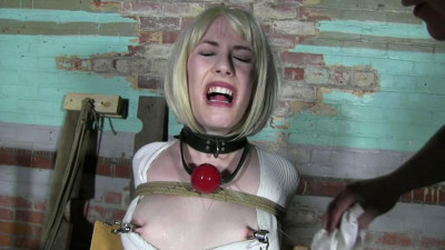 Tight bondage and hard torture for a sexy girl and policewoman