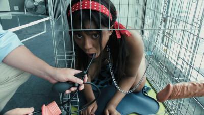 HD Bdsm Sex Videos Mimi  Pooch Caged