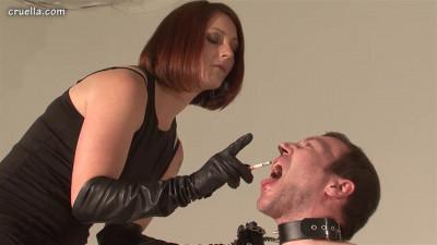 Description Mistress Jo - Jo Trains A Slave - HD 720p