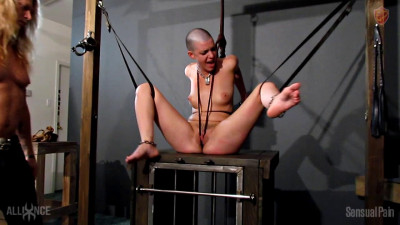 Description SensualPain - Abigail Dupree - Harsh Discipline Pussy Whipping