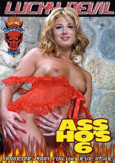 Ass Hos 6