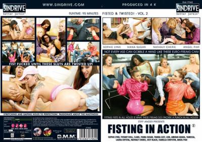 Description Fisting in Action Vol.2