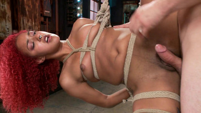 Hot Newbie is Brutally Fucked(Daisy Ducati, Maestro)