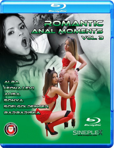 Romantic Anal Moments 3