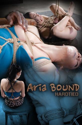 HardTied – Dec 16, 2015 – Aria Bound, Aria Alexander, Jack Hammer