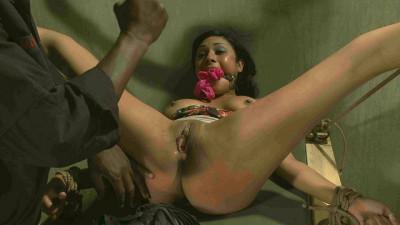 Beretta James ahd her Anal Punishment