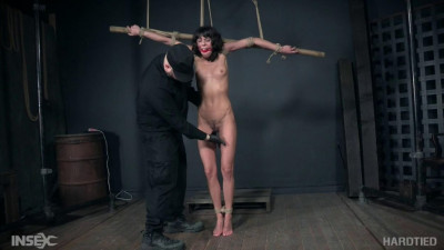 Bondage Humiliation For Lexi Foxy