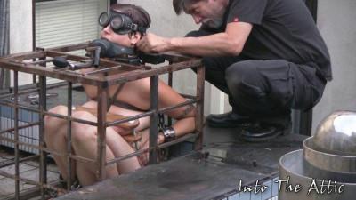 Luna Slave