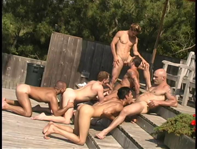 Fire Island Cruising vol 2