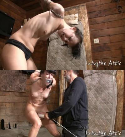 Description Bondage, domination, strappado and torture for sexy brunette