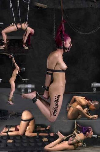 Violet's Training – InSex